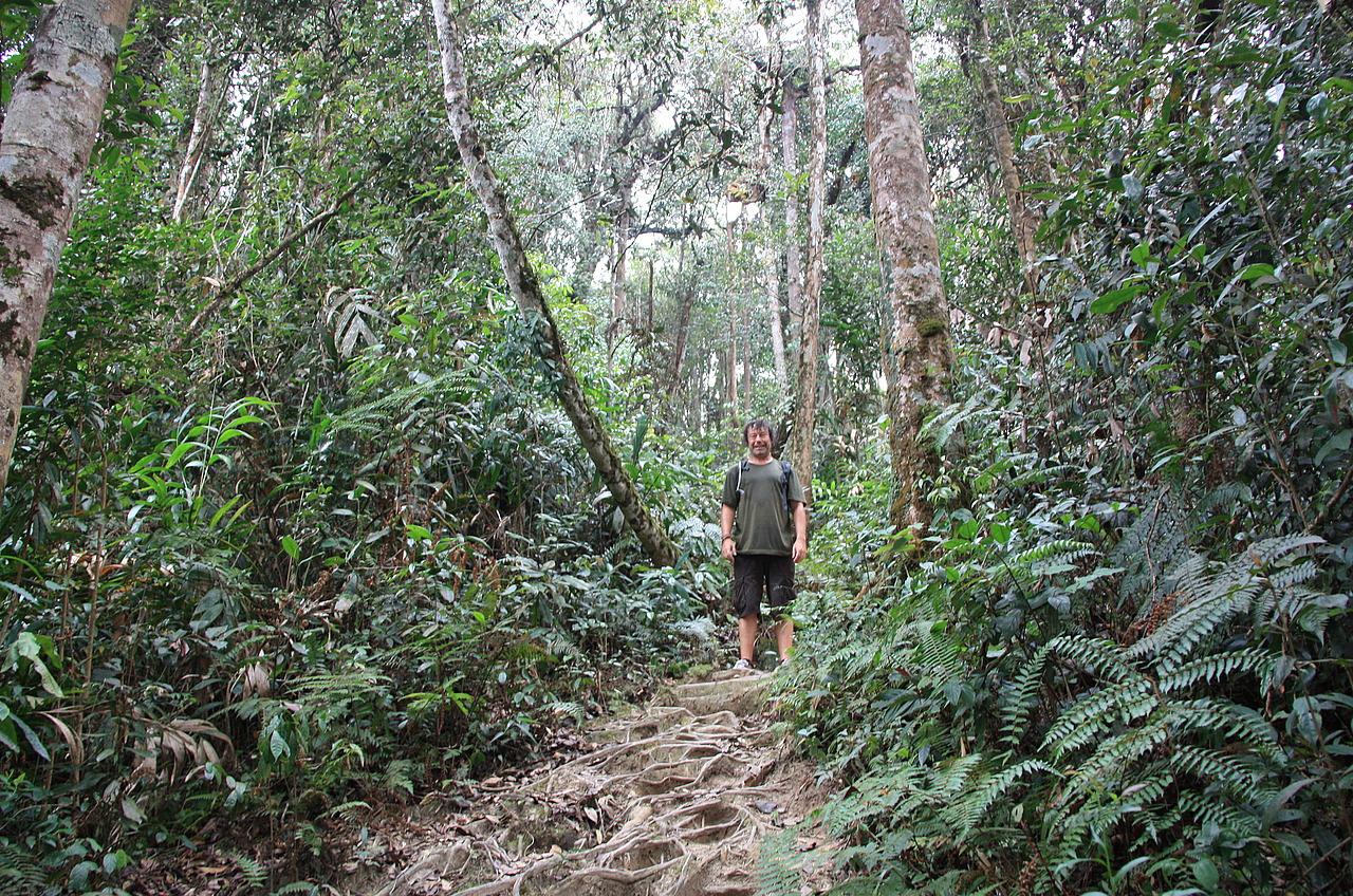 Wilderness explorers 5