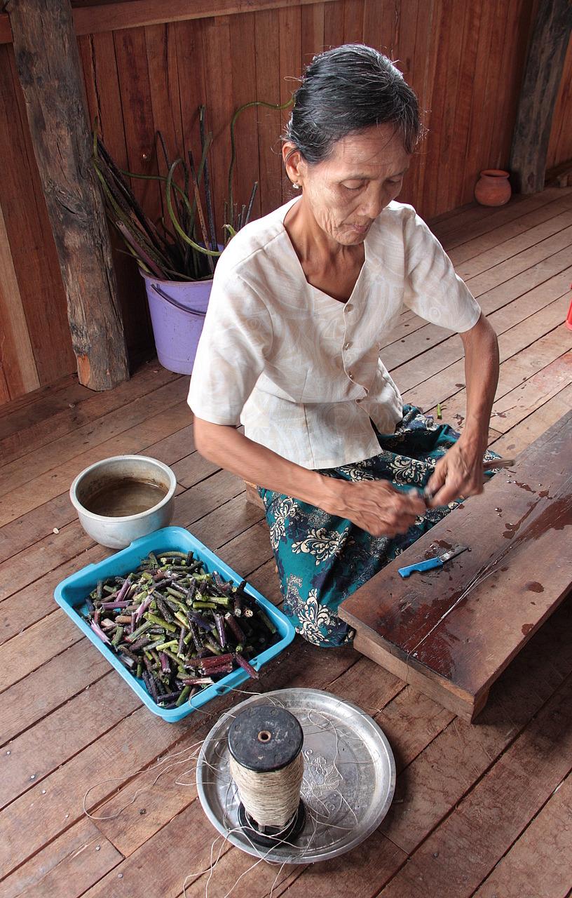 Turning lotus fibre to thread
