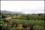 Red mountain estate