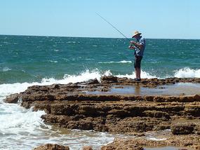 Ash fishing