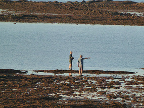 Bob & Ash checking out the reef at low tide