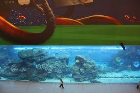 Part of the Aquarium at the Dubai Mall