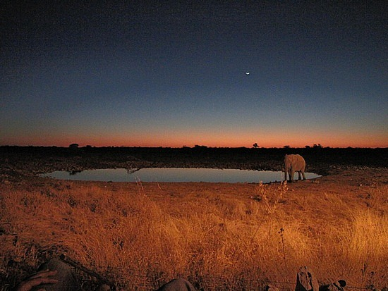 Sunset Etosha National Park, Namibia.