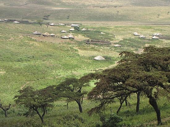 Village down below