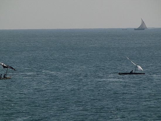 Sailing Dowdhs