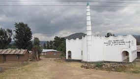 Mosque, Tanzania.