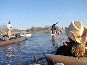 Mokoro, Okavango Delta, Botswana.