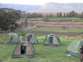 Tents overlooking a South African vineyard