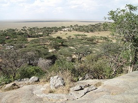 From above the Serengeti Visitors Centre