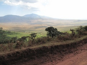 Onto the Serengeti we head to