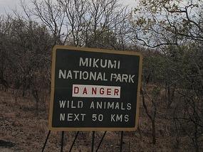 60km drive through Mukumi National Park