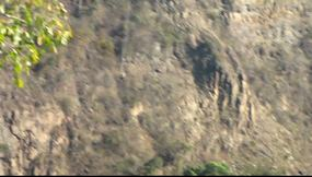 Click here 16 sec VIDEO: Bungy jumping