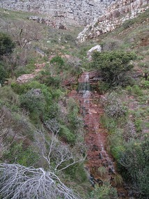 Climb up Table Mountain