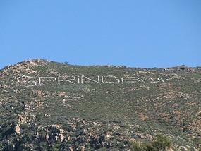Springbok township
