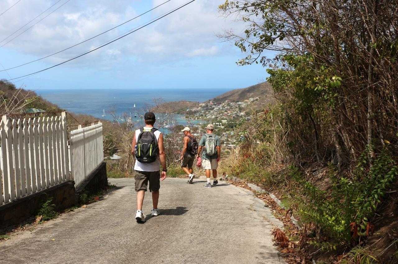 Heading down to the harbour