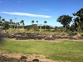 Cemetery - Big Island