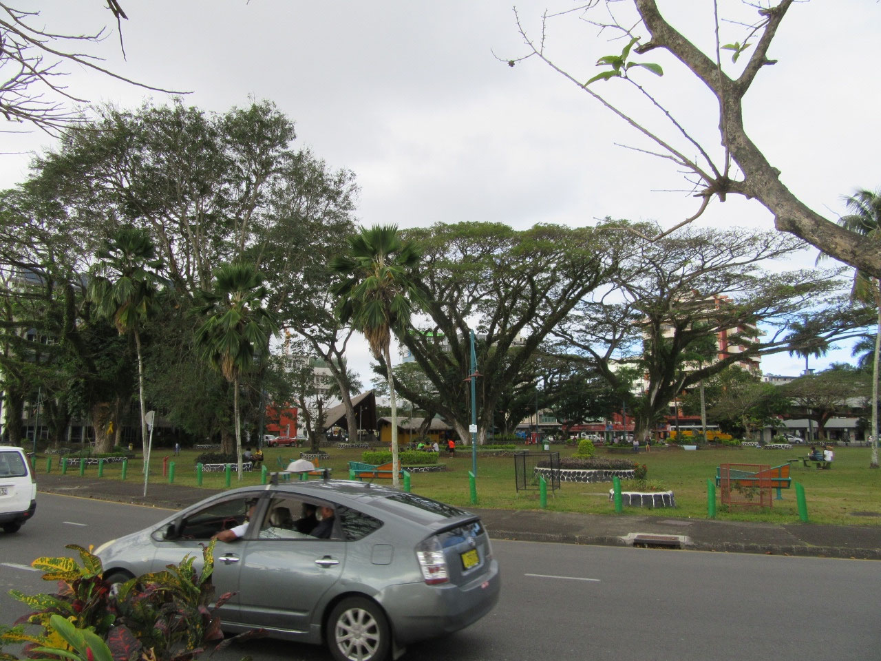 Rate Sakura park