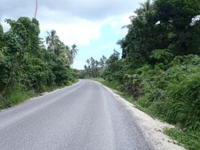 Main road Malakula