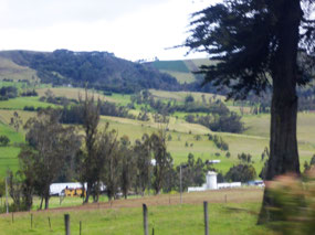 The country side 1