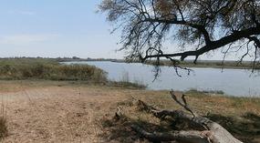River Okavango