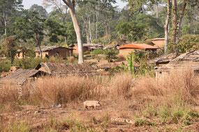 Fourth village