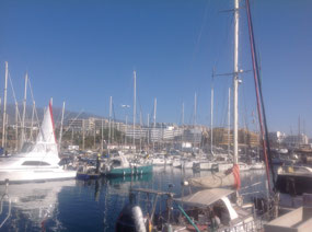 The local marina
