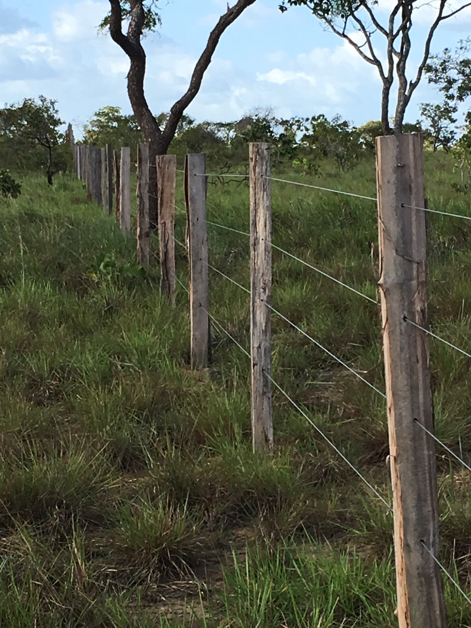 The fence the brethren erected