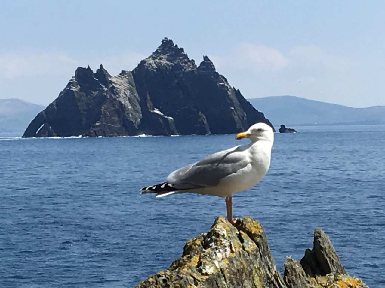 Small Skellig in the background