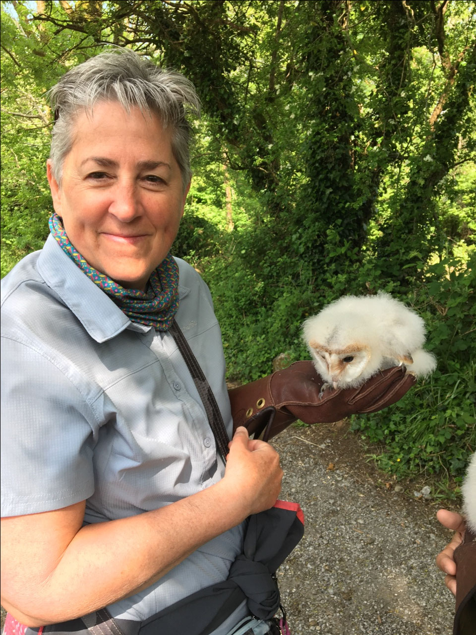 Me with a 4 week old baby barn owl