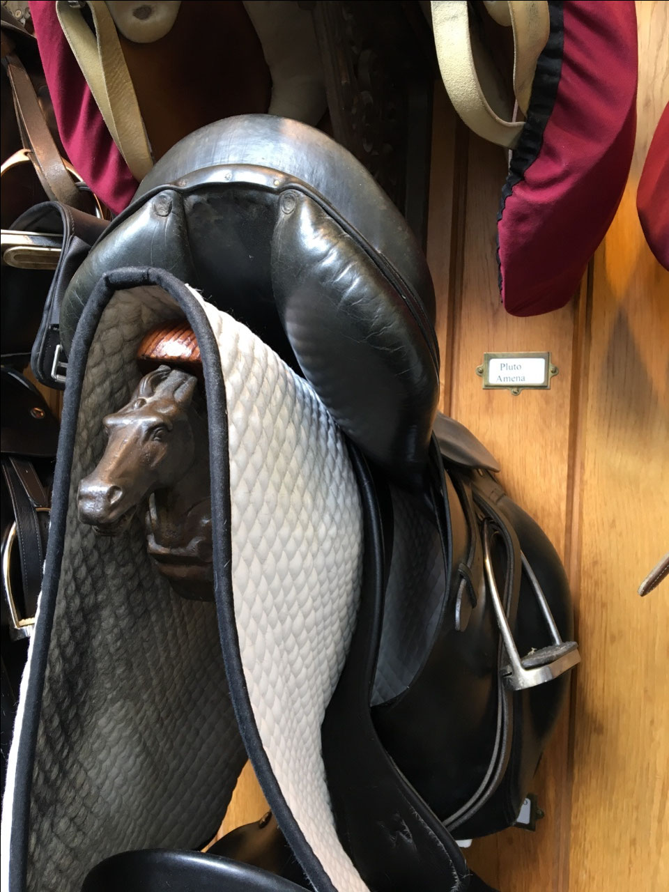 One saddle