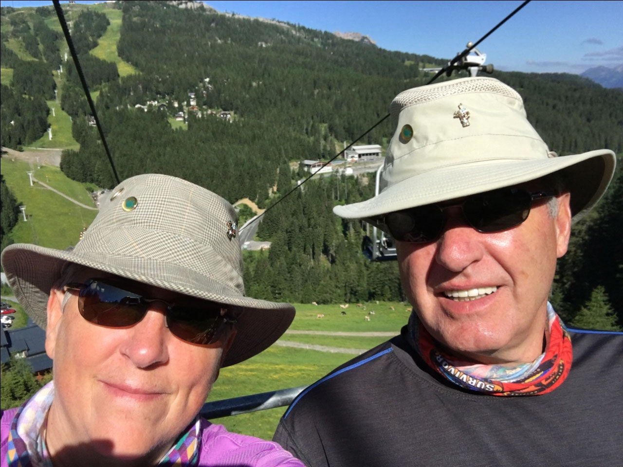 Going up the chairlift and cows in the background