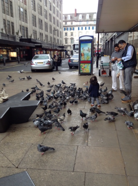 Can you say too friggin' many pigeons??