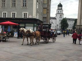 More horses near Salzburg Museum