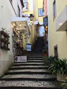 Still more Sintra