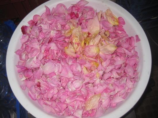 1 kg Rosenblätter...
