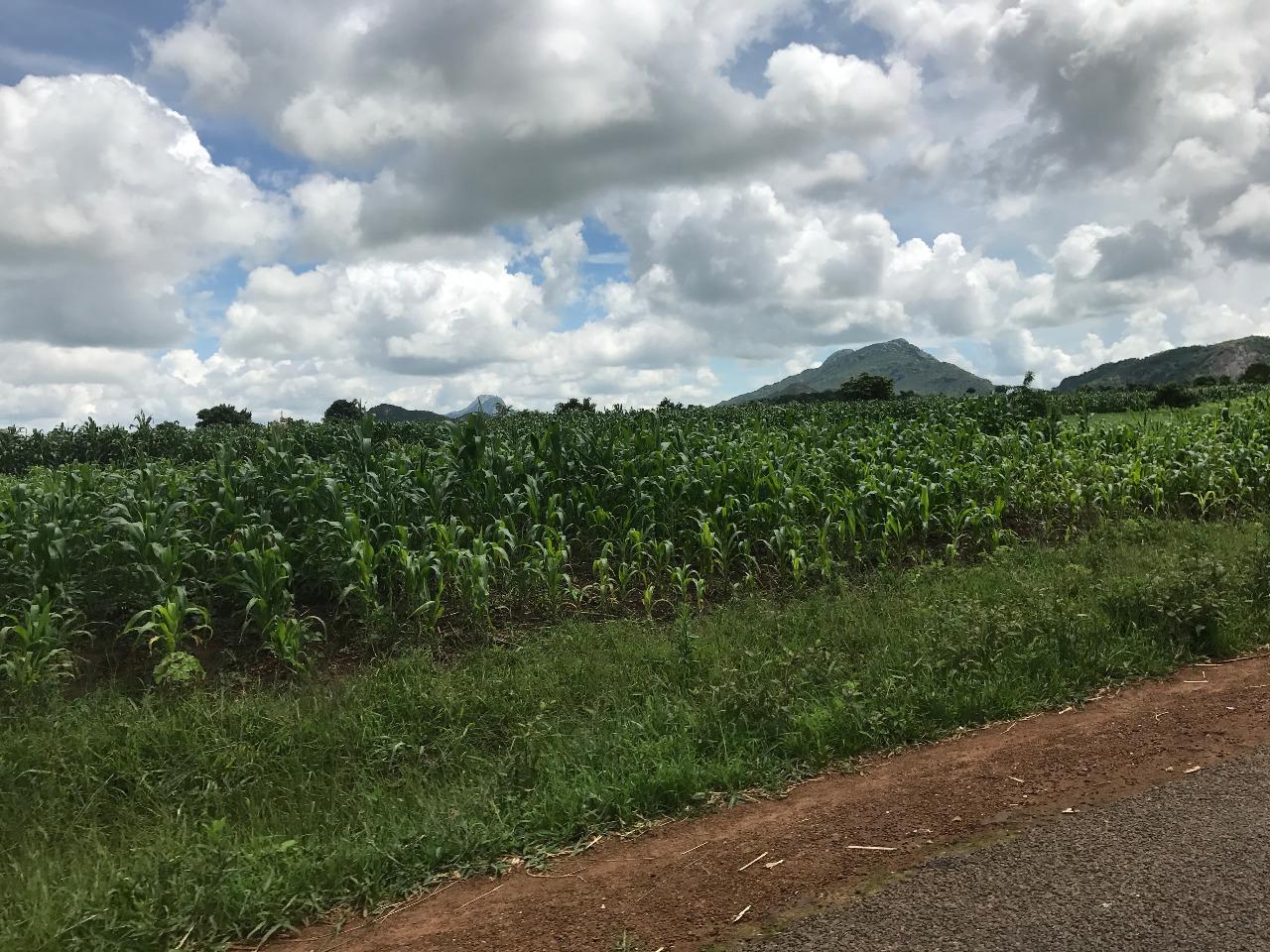 mountains to Dedza