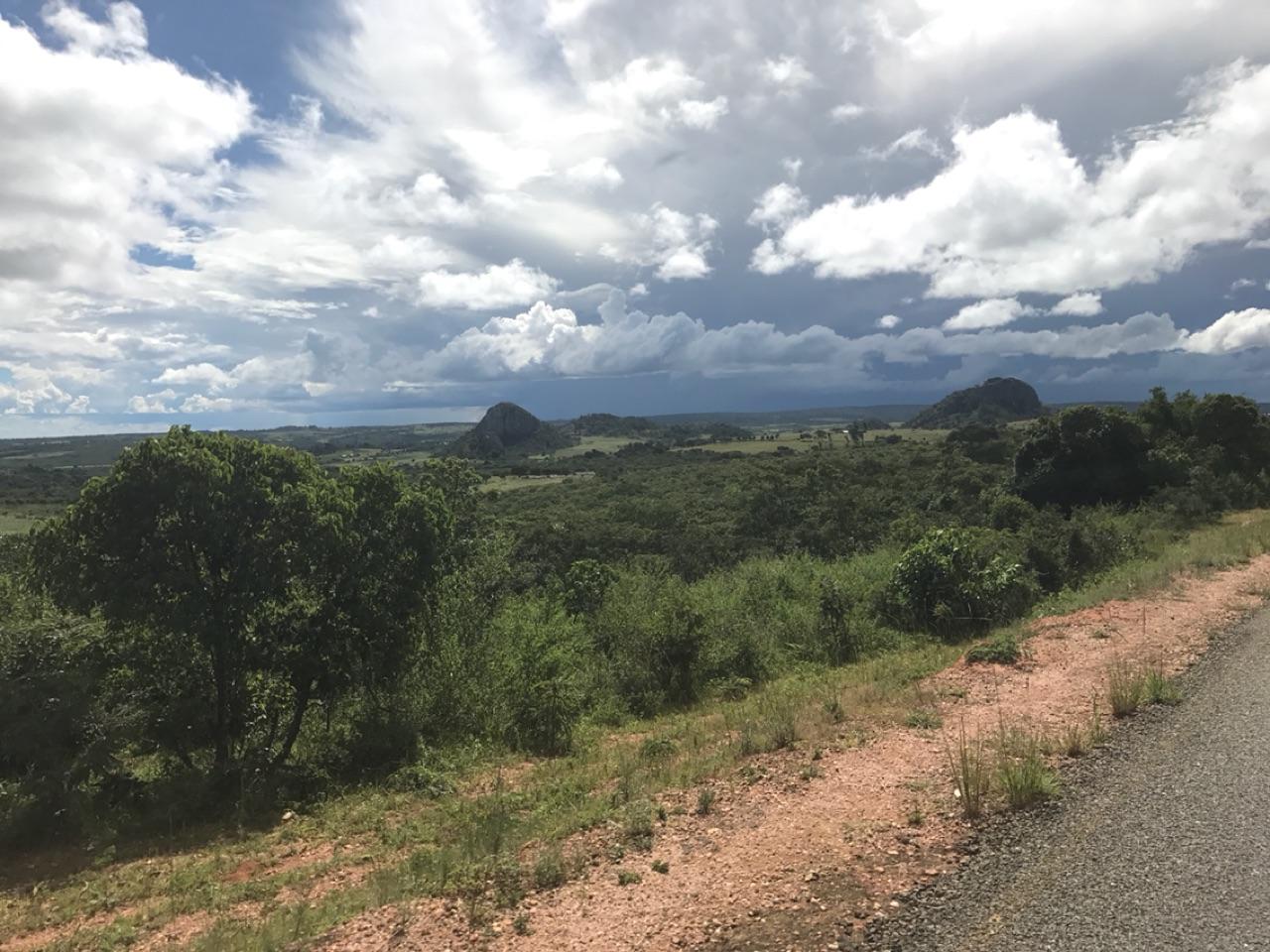 Road to Mzuzu