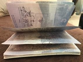 The offending passport
