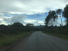 Woods of Mzuzu