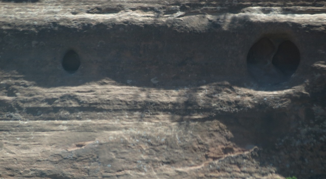 Close up of weep holes