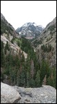 Looking up at the Uncompahgre River