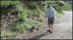 Out walking in Arizona
