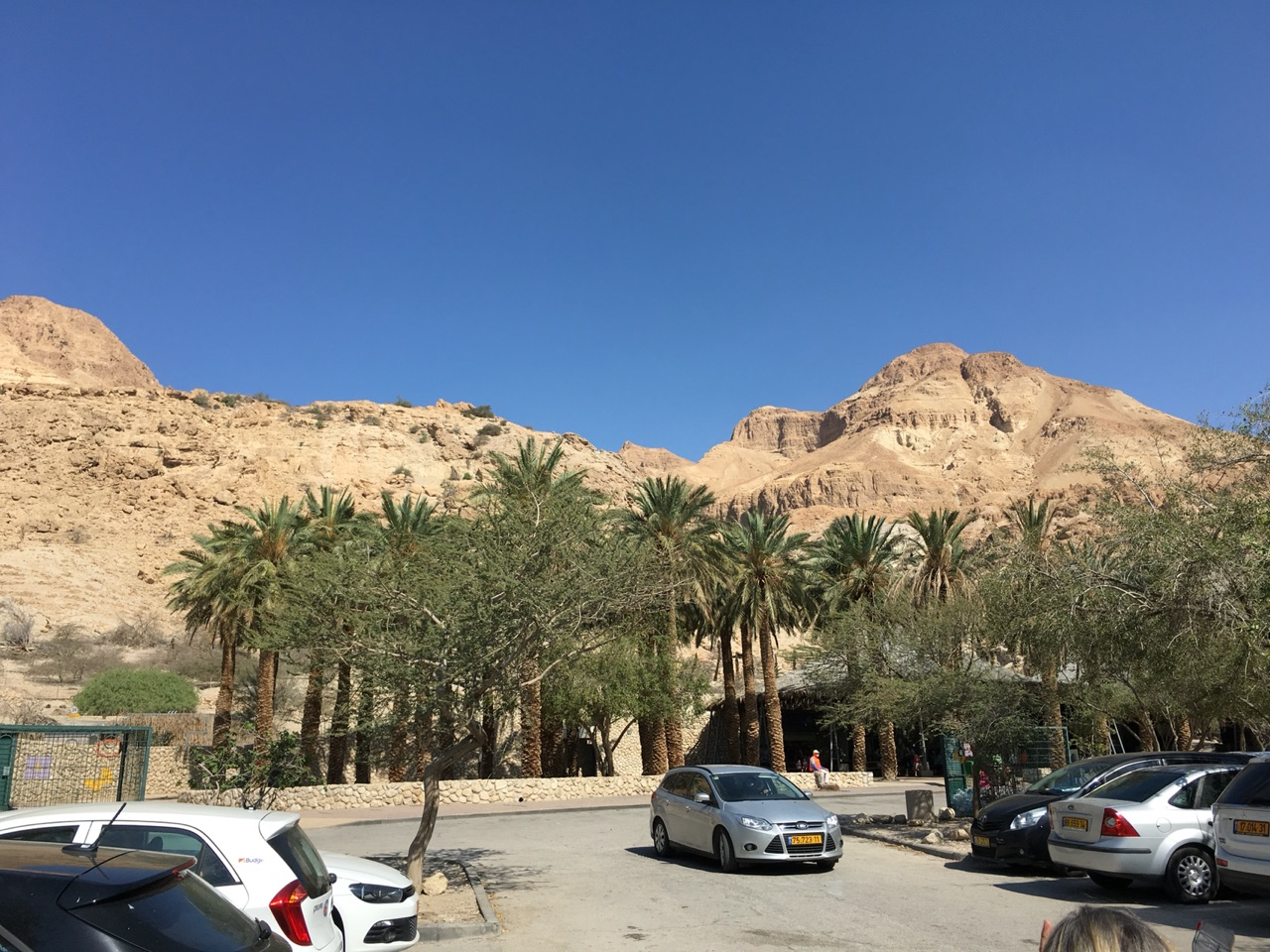 Visiting the parking lot of Ein Gedi Reserve