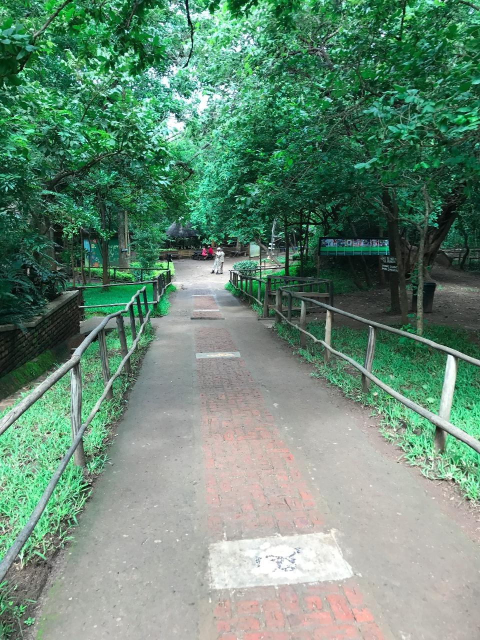 Entering the Lilongwe Wildlife Centre