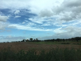 Farms of Italy