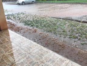 A bit of rain