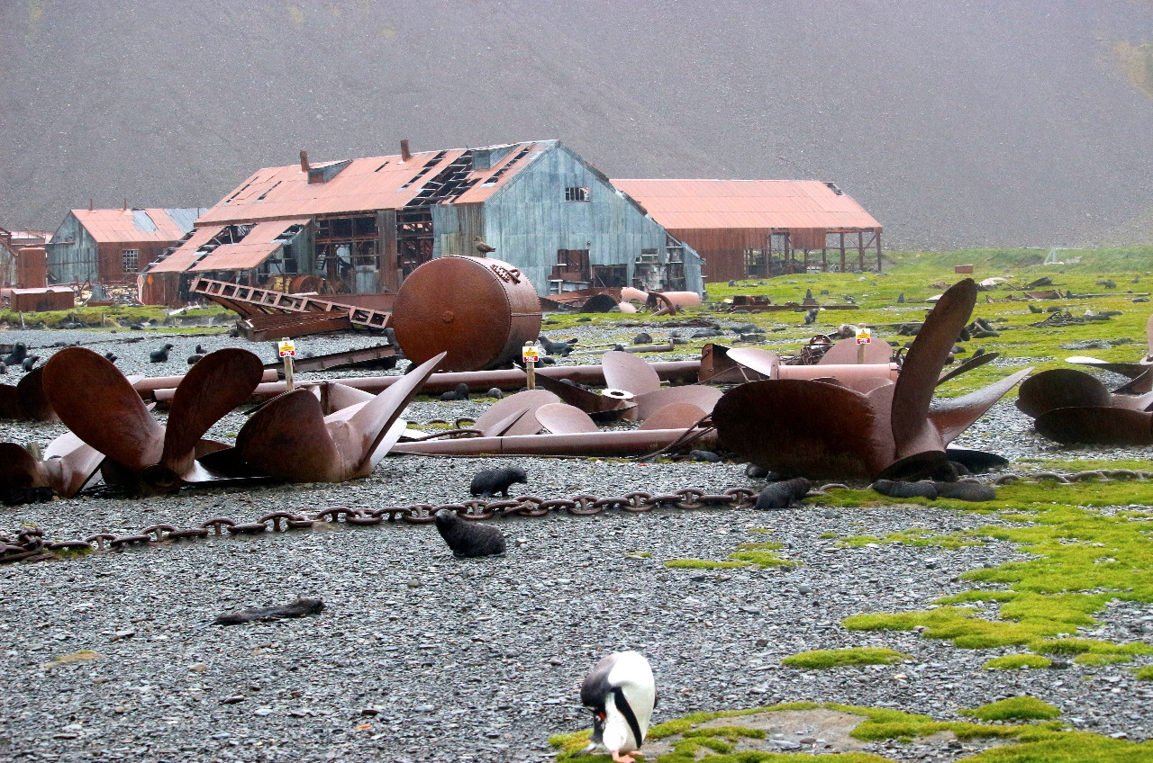 Stromness Bay whaling remnants