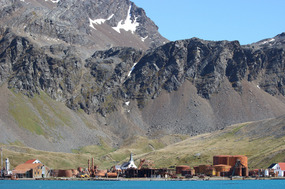 Grytviken nestled between the mountains & the sea