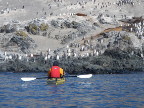 The EASY way to the Gentoo colony...