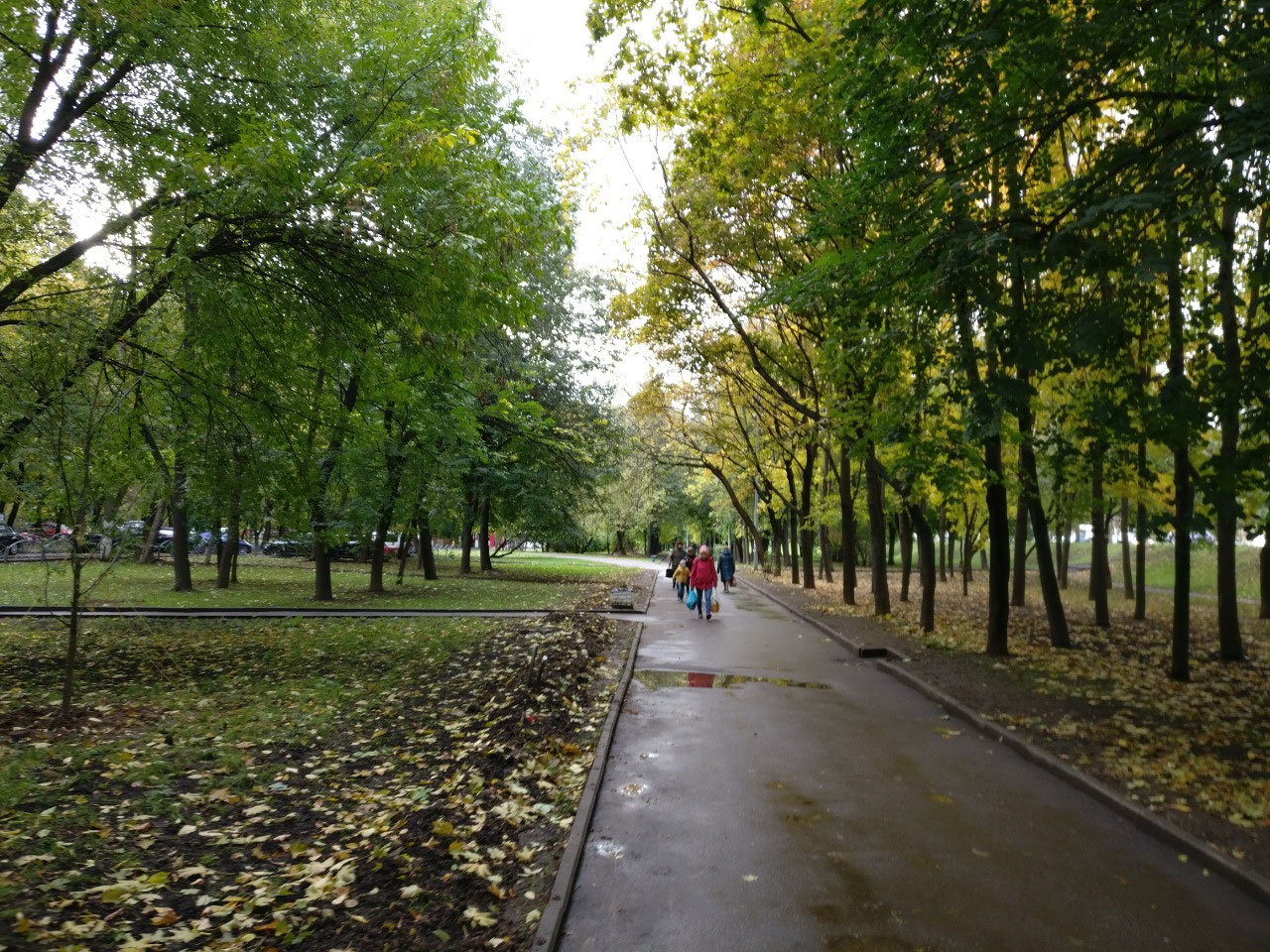 Tree-lined path to Kolomenskoye